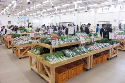 新鮮な地場野菜や果物がズラリと並ぶ