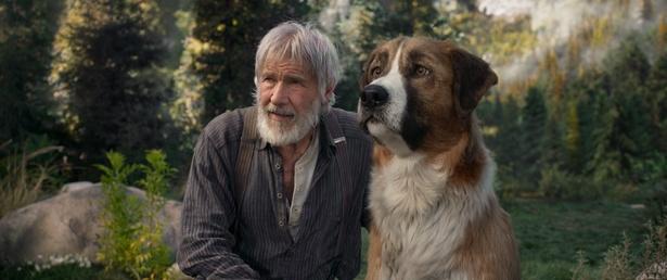 名優ハリソン・フォードが告白「私の人生には常にイヌがいました」
