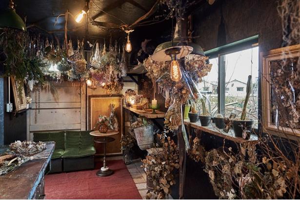 花に囲まれた別世界が広がる / driedflowers shop KUSAKANMURI