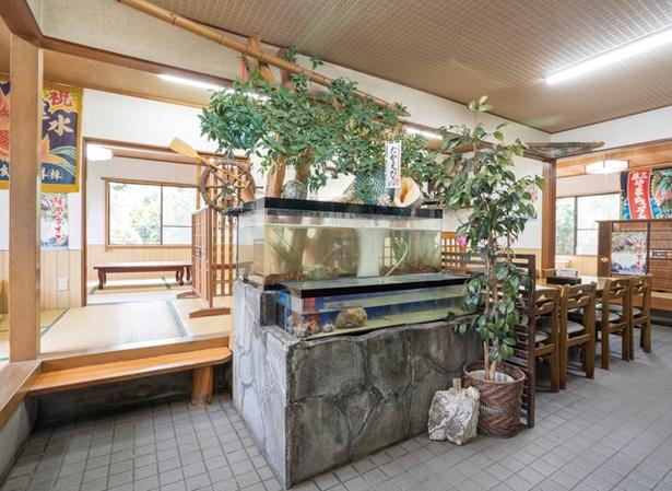 ドライブイン大浦 / テーブル席や座敷で食事できる。魚、伊勢エビ、貝が入る生け簀を完備。鮮度をキープする