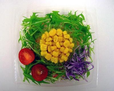 大根のベストな歯ざわり2ミリを体感!工場がこだわった「茨城県産細切大根と水菜のサラダ」(200円・税込)
