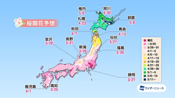 全国主要都市の桜開花予想(情報は2020年3月24日発表 / ウェザーニューズ)