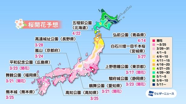 全国の桜名所の桜開花予想(情報は2020年3月24日発表 / ウェザーニューズ)