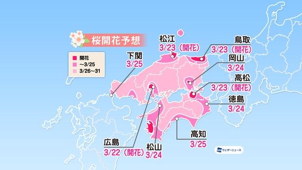 中国・四国地方の桜開花予想(情報は2020年3月24日発表 / ウェザーニューズ)