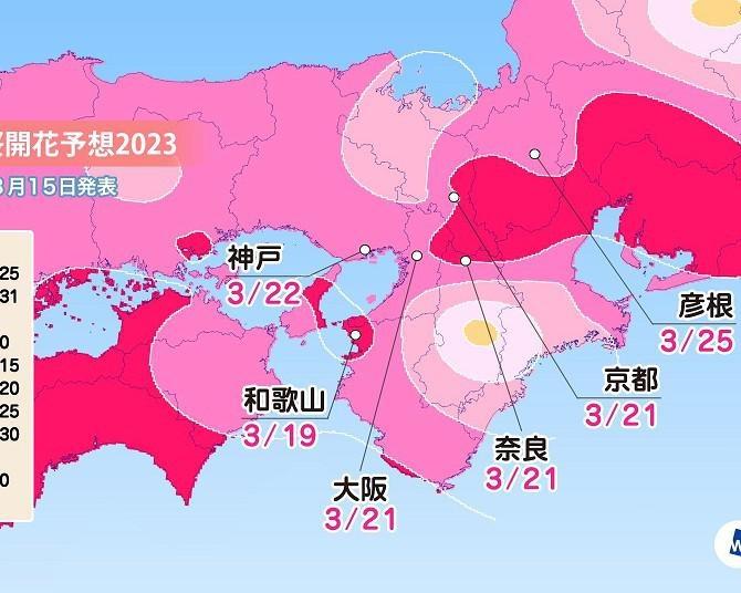 2020年の桜開花・満開予想(関西・中国・四国・九州編) 九州南部では例年よりやや遅い開花に