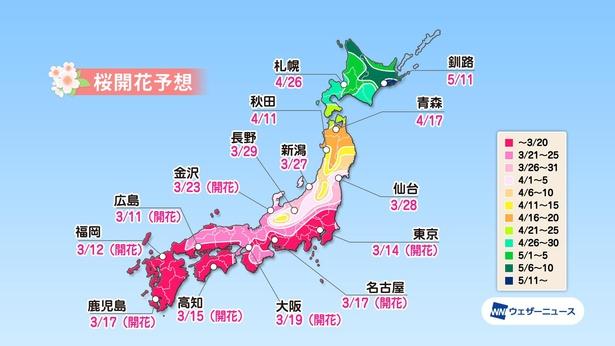 全国主要都市の桜開花予想(情報は2021年3月24日発表  ウェザーニューズ)