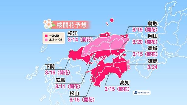 中国・四国地方の桜開花予想(情報は2021年3月24日発表  ウェザーニューズ)
