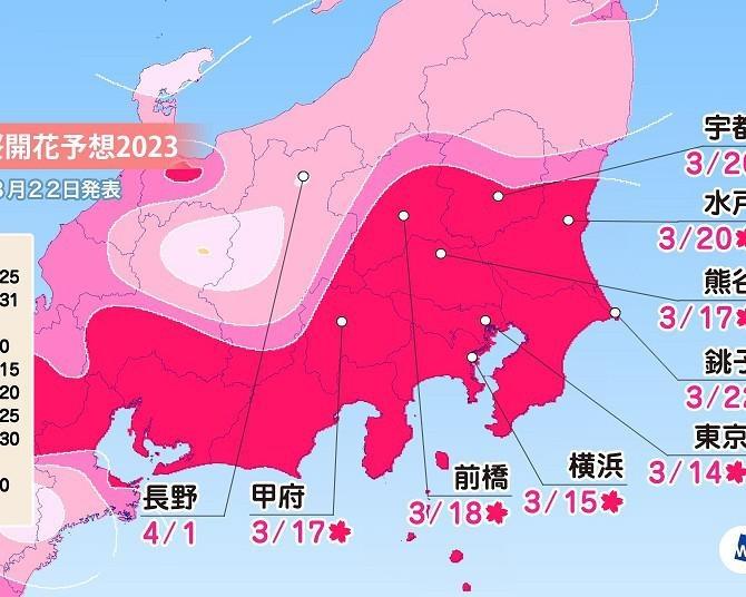 2020年の桜開花・満開予想(関東・中部編)関東の桜はいよいよ満開!東海は3月末から、北陸は4月初めに見頃に