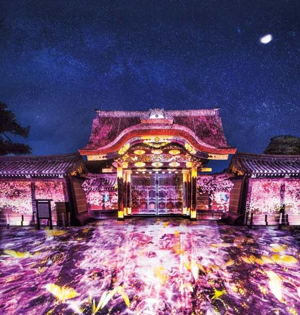 唐破風(からはふ)の堂々とした姿にプロジェクションマッピングが施され、桜色の光などで鮮やかに染まる/元離宮二条城
