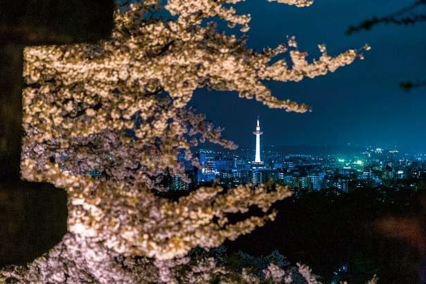 京都タワーなど市内の夜景も一望/清水寺