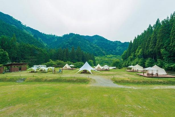 広々としたフィールドに、テントが4サイトのみ。ゆっくりくつろげる。