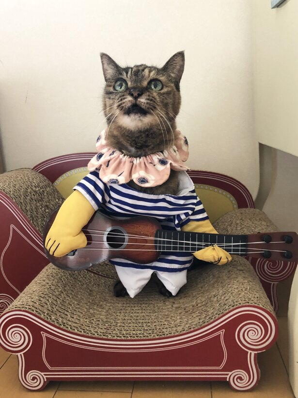 ギターもお似合いのモコちゃん。何を歌ってくれるのかな?