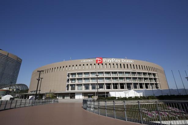 福岡PayPayドームに足を運んで、お得なクーポンを使い倒そう!