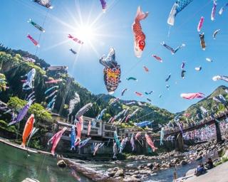 この春行きたい!3・4月に開催される熊本のイベント4選