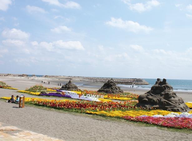 【写真を見る】サンドフラワーフェスタ2020 / 海を背景に、砂の造形と花の共演を観賞できる