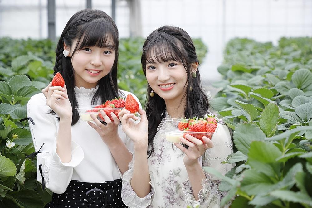 #アルイテラブル SKE48の平野百菜と藤本冬香がイチゴ狩りを大満喫♪
