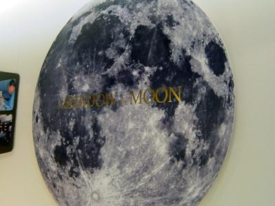 月の影のパネルも