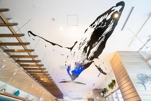 レストランの天井にはクジラのアートも