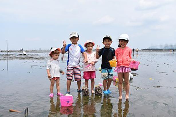 家族連れで賑わう遠浅の海岸での潮干狩り