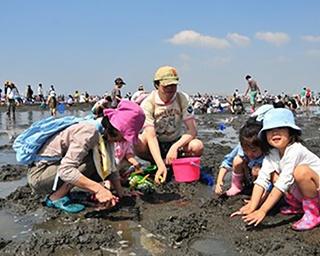 関東エリアのGWおすすめ潮干狩りスポット!ぷっくりおいしい貝を味わおう