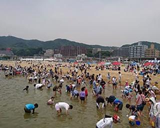 関西エリアのGWおすすめ潮干狩りスポット!ファミリーでのんびり楽しもう