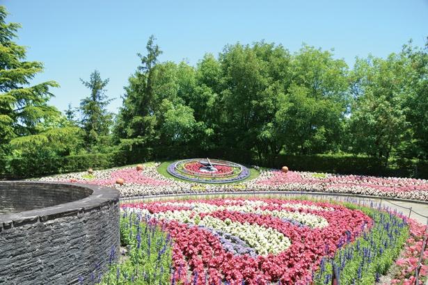 公園内にあるファンタジーガーデン。花時計を中心にしたカラフルな花だんが広がる /  安城産業文化公園デンパーク
