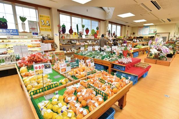 道の駅の産直コーナー。地元の農家が作る新鮮な野菜や果物、特産品を利用した加工品が多数 /  安城産業文化公園デンパーク