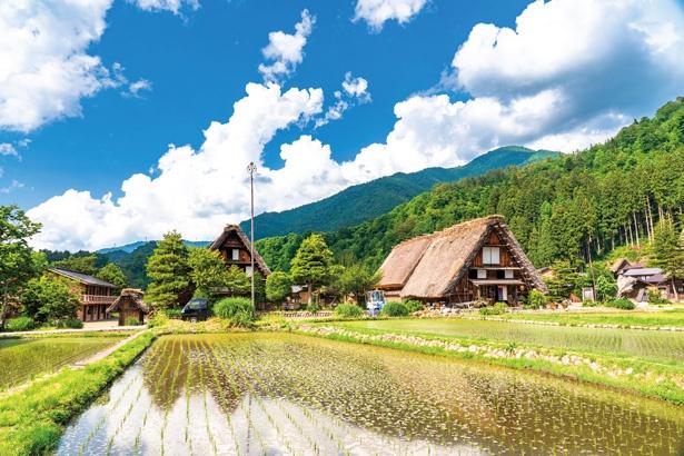 春の世界遺産を散策 / 白川郷