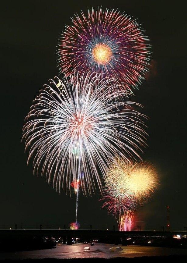 迫力満点の尺玉や、色鮮やかなスターマインが華やかに夜空を彩る / 戸田橋花火大会