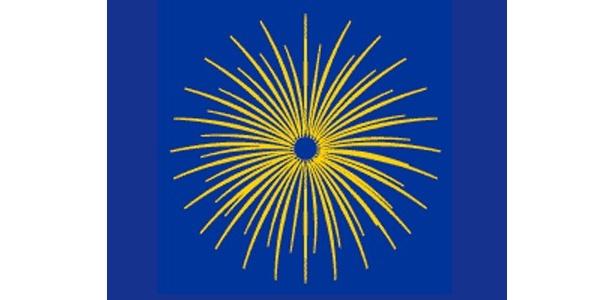【割物(菊谷牡丹など打ち上げ花火の代表格)】 菊: 多数の「星」が尾を引きながら丸い菊の花を描き出す。この光跡による尾を「引」と呼ぶ。