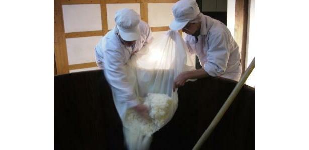 小澤酒造では、2月に木桶の仕込みが行われる