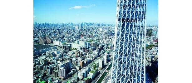 イーストタワーから見えるスカイツリーはこんなにも近い!