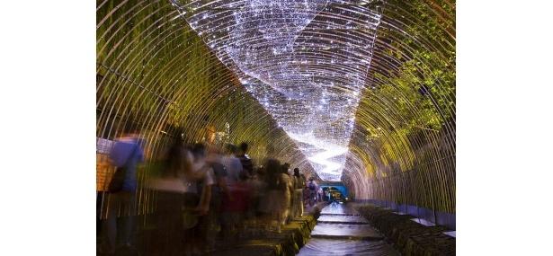 「京の七夕」堀川会場の見所のひとつ光の天の川は必見!