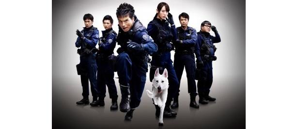 【写真】『DOG×POLICE 純白の絆』は10月1日(土)より全国公開