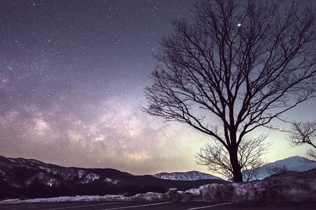 標高600メートルの高原で眺める満天の星空