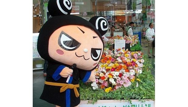 きれいな花でやんしょ