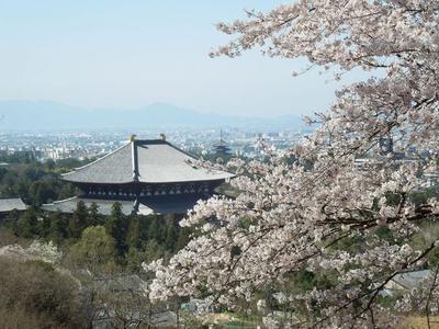 奈良の自然と歴史を満喫