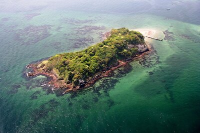 東京湾で自然林のある最大の無人島