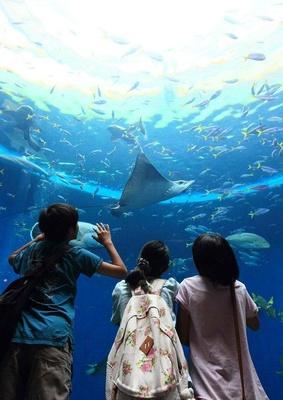 「トロピカルアイランド」にある巨大水槽「無限の海」