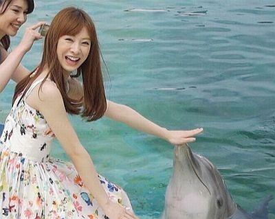 イルカとも初対面!