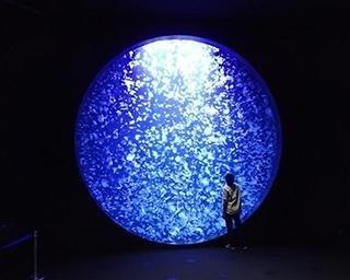 世界一のクラゲ水族館、鶴岡市立加茂水族館の楽しみ方ガイド!クラゲラーメンやクラゲアイスも人気