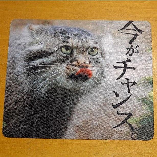 「マウスパッド」(税込770円)