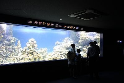 水族館内部。都会的な雰囲気が漂う