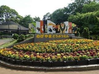 横浜市立野毛山動物園の楽しみ方徹底ガイド!入園無料で動物と触れ合いもできる