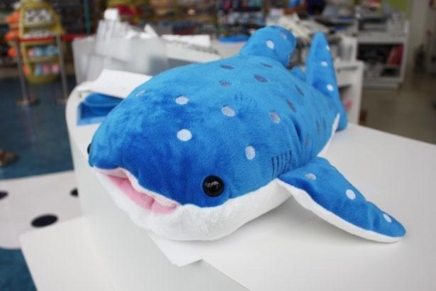 愛らしい表情のジンベエザメのぬいぐるみ。見て、触って癒やされて!「まるのみジンベエ」(税込3190円)