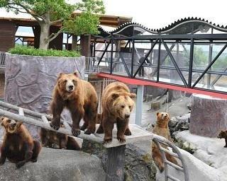 阿蘇カドリー・ドミニオンの楽しみ方を紹介!動物たちを間近に見て触れ合おう