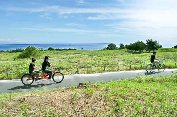 潮風を感じながら、緑の中を走り抜けて気分爽快!