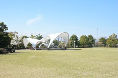 多目的に楽しめる「芝生広場」の広さはなんと約9000平方メートル!