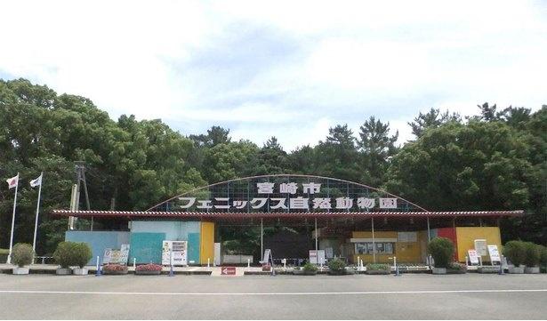 動物園&遊園地で丸一日楽しめる宮崎市フェニックス自然動物園。2020年6月現在、県内在住者のみ公開中