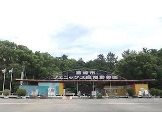 宮崎市フェニックス自然動物園で約100種1200頭(羽)の動物たちを観察!最新情報&おすすめの楽しみ方を公開